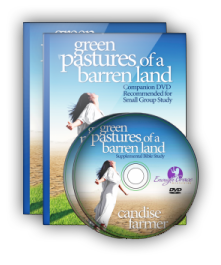 Green Pastures of a Barren Land Companion DVD
